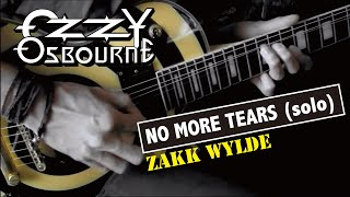 Ozzy Osbourne /  Zakk Wylde - No More Tears (Solo)  :by Gaku