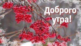 Доброго утра! Хорошего дня!