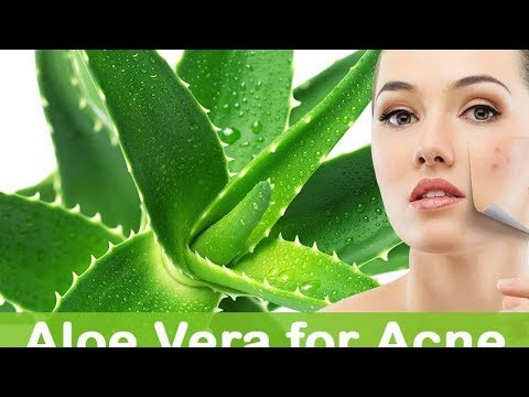 4 Easy Ways to Make Aloe Vera Gel for Face at Home
