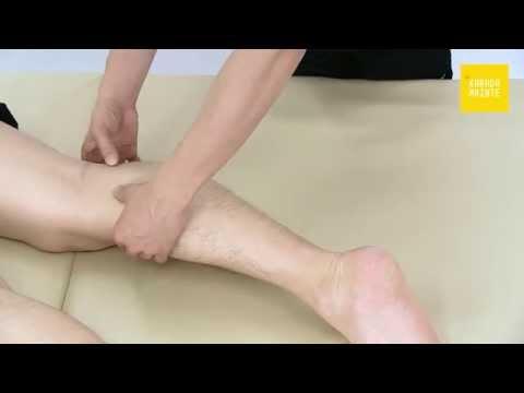 41膝窩筋