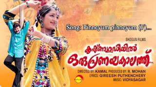 Video Pinneyum pinneyum - Krishnagudiyil Oru Pranayakalathu download MP3, 3GP, MP4, WEBM, AVI, FLV Oktober 2018
