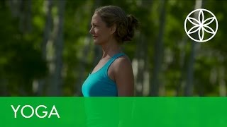 Yoga for Weight Loss with Colleen Saidman - Energize | Yoga | Gaiam