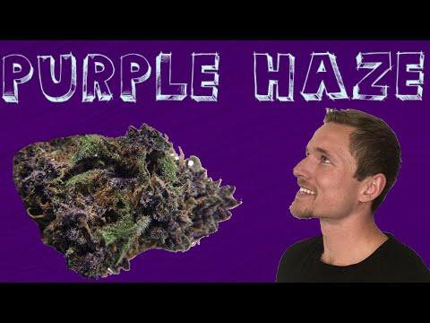 Purple Haze: Lucy Sky Boutique, Denver