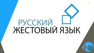 Русский Жестовый Язык (видеокурс для родителей глухих детей)