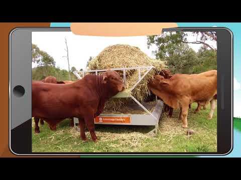 TVC: Advantage Feeders Tray Hay Feeders