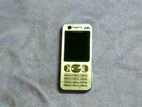 Apply Martin Fields Protector (Sony Ericsson W890i)