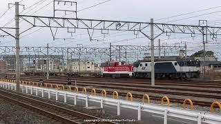JR貨物 DD200 5号機ムド輸送する8865レ貨物列車 吹田タに到着(R1.1.25)