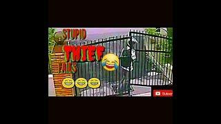 Stupid thief fails compilation