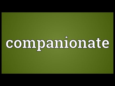 companionate relationship definition of cheating