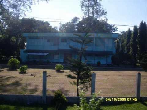mlang,north cotabato