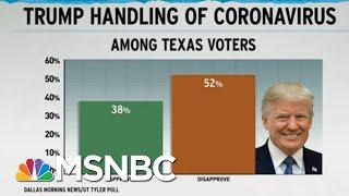 Trump Botching Coronavirus Response Weighs On GOP Political Polls | Rachel Maddow | MSNBC