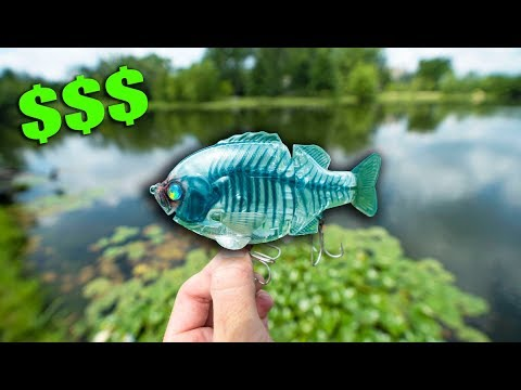 Testing A RIDICULOUS $120 LURE Off EBay -- (Pond Hopping With Uber Expensive Lures)