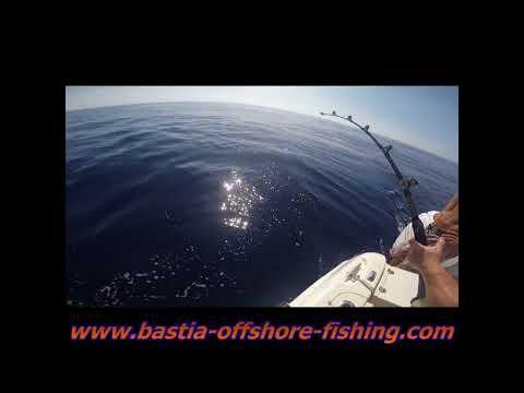 big game tuna 2017 HD Bastia Offshore Fishing