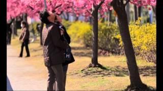 Орёл и Решка - 8.13 Выпуск (На краю света. Токио)