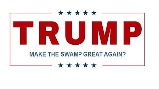 mrl mr trump we didnt vote to make the swamp great again