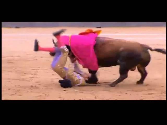 Trágica tarde en la plaza de toros de Las Ventas, en Madrid 2014
