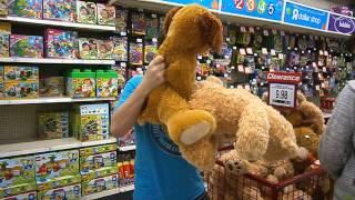 Teddy Bear Porno Party Daniel, (Nick & Kayla)