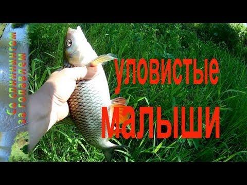 Эти Воблеры ловят Голавля на быстрой реке. Голавль на спиннинг весной. Рыбалка на реке.