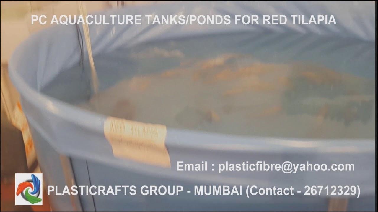 PC Aquaculture Tanks for Red Tilapia