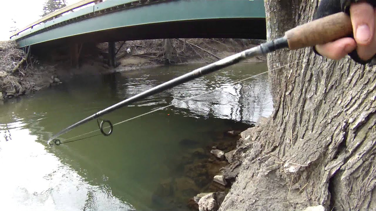 Steelhead warriors of michigan city youtube for Michigan out of state fishing license