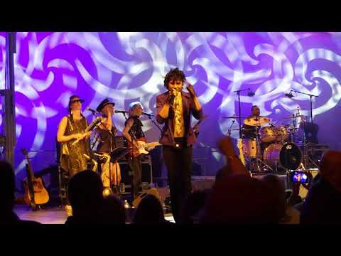 The Purple Veins PRINCE tribute - POP LIFE - FISHERS IN 9/1/2017