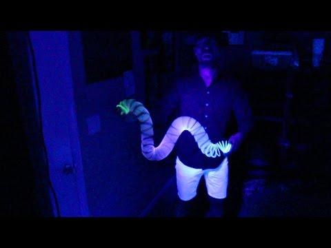 Psychedelic Slinky Tricks (Slinky Manipulation)