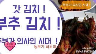 맛의고장 빛고을 광주 갓김치 부추김치 맛있게 담는법 !