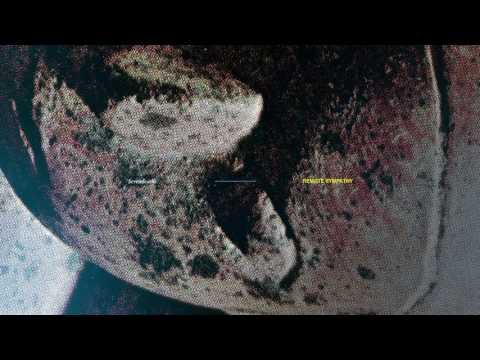 Sevendeaths - Eternal Sprung (Remote Sympathy LP out Feb 24)