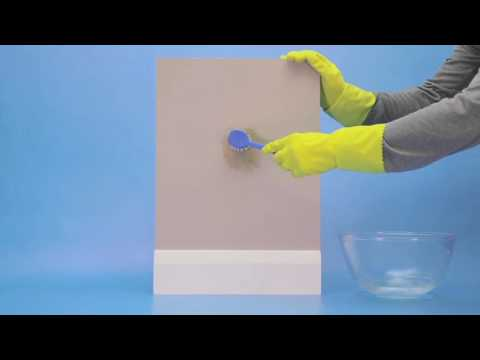 Cómo sacar los hongos de la pared - YouTube