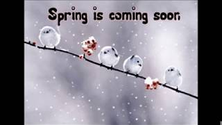 Spring Is Coming Raggae
