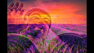 RAISE VIBRATION - 528Hz Positive Energy - Be Positive Minded, Calm & Balanced Meditation Music