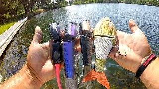 Fishing GIANT New Swimbaits in ULTRA CLEAR Water!!!