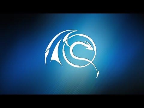 kali linux revealed pdf free download