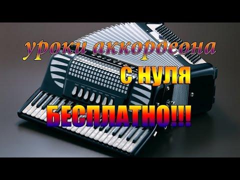 Игра на аккордеоне для