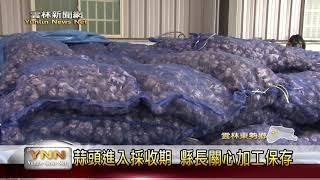 雲林新聞網-東勢縣長視察蒜頭乾燥機
