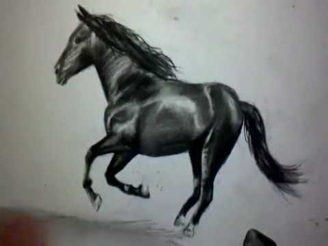 Comment dessiner un cheval au galop tutoriel youtube - Cheval dessin couleur ...