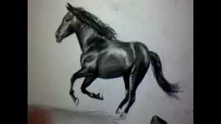 comment dessiner cheval