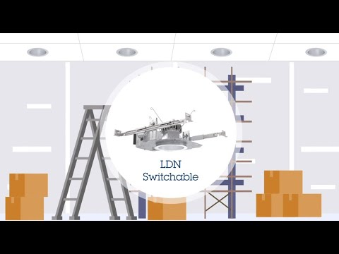 LDN Switchable