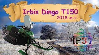 видео Cнегоход Irbis Dingo (Ирбис Динго) T125 или «Собака на Севере»