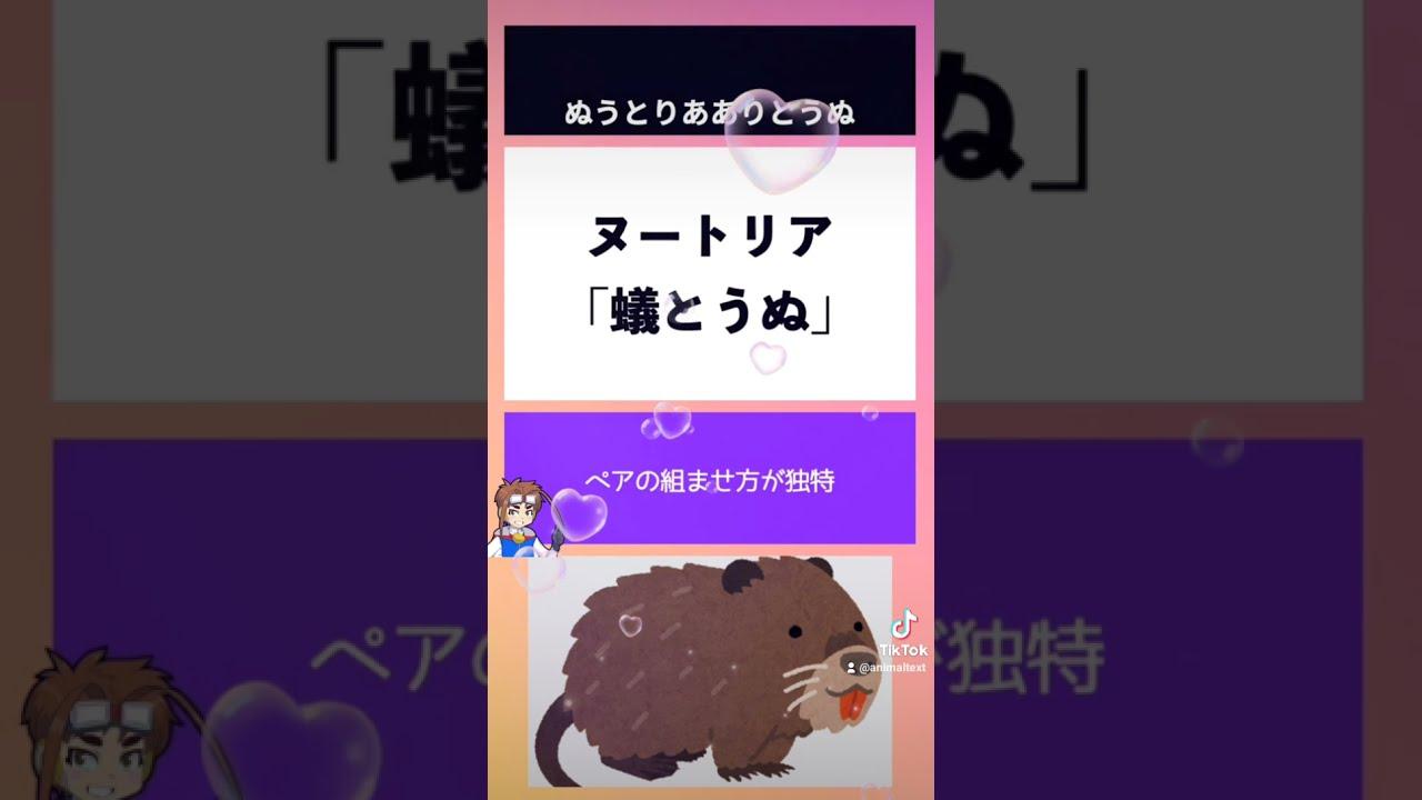 動物回文part7