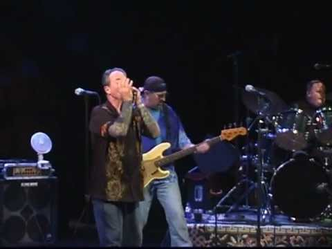 The Nighthawks - Born in Chicago - The Barns at Wolf Trap