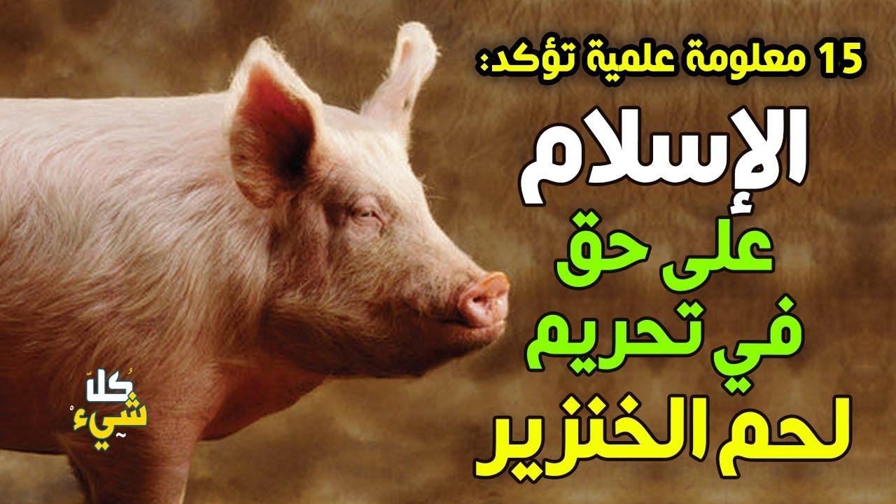 ١٥ معلومة علمية تؤكد أن الإسلام على حق في تحريم لحم الخنزير - YouTube