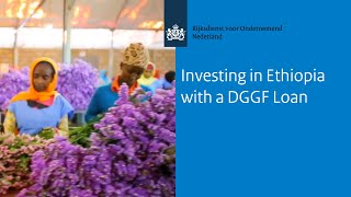 Investing in Ethiopia with a DGGF Loan