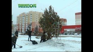 видео В Волгограде вырастают новогодние елки
