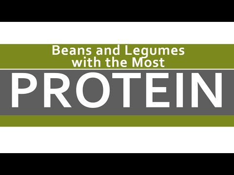Beans and Legumes with the Most Protein - Super Foods Rich in Proteins - BENEFITS OF WELLNESS