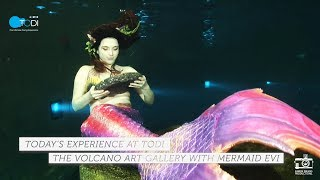 Explore the Volcano Art Gallery with the adventurous, art collectin...
