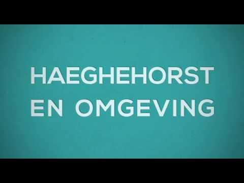 Vakantiehuisje Haeghehorst Ermelo te huur en te koop