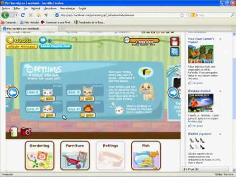 Pet Society Hack Playfish Cash