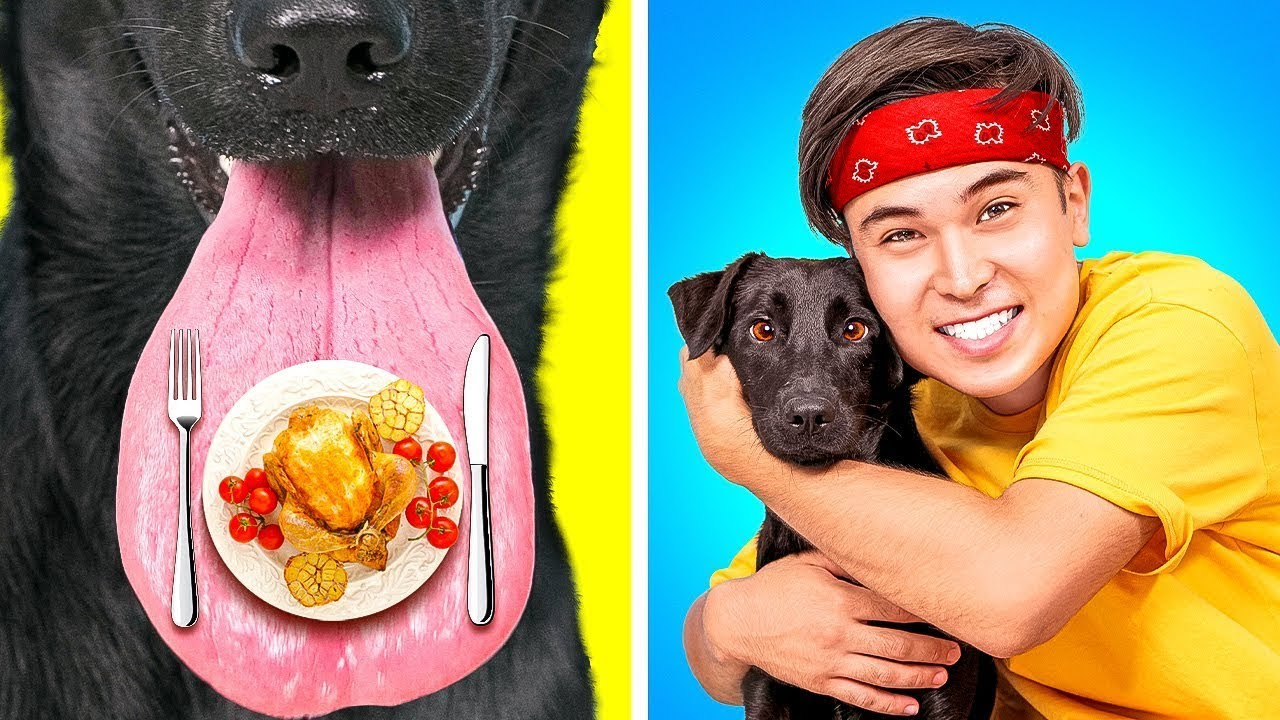 Cómo colar COMIDA y MASCOTAS - Si los perros actuaran como los humanos por La La Vida Escolar