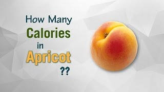 Healthwise: How Many Calories in Apricot & Dried Apricots? Calories Intake and Healthy Weight Loss